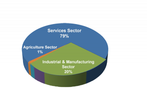 Pie chart showing the make up of U.S. GDP - with Services 79%.